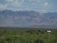60 Acres Foreclosure Only $298/Mo : Sierra Blanca : Hudspeth County : Texas