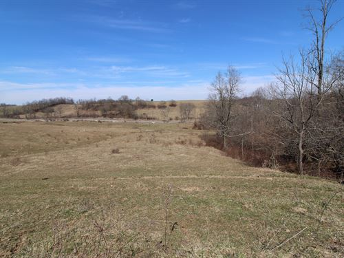Sr 145 - 16 Acres : Woodsfield : Monroe County : Ohio