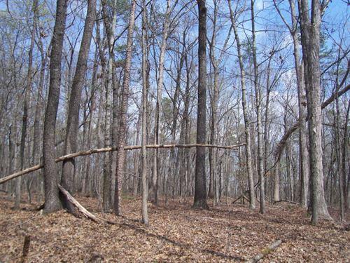 North Georgia Mountain Land : Clarkesville : Habersham County : Georgia