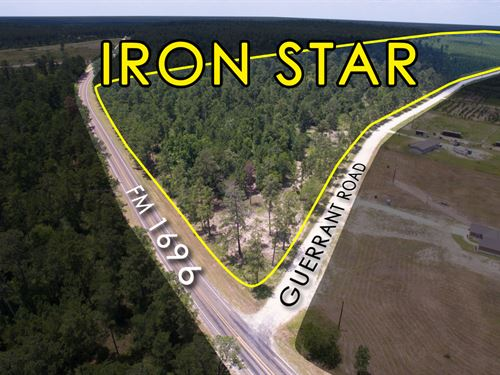 12.839 Ac Tract 8 Iron Star : Huntsville : Walker County : Texas