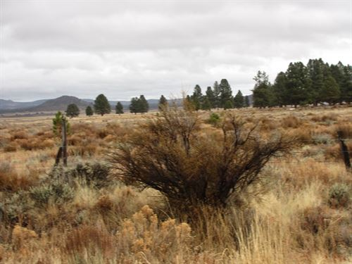 Grazing, Buildable Parcel : Sprague River : Klamath County : Oregon