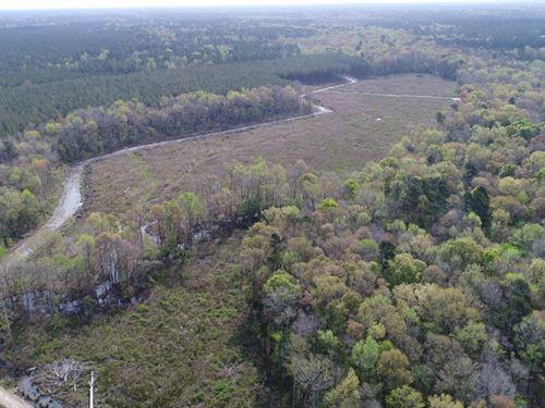 Harvey Tract : Ridgeville : Berkeley County : South Carolina