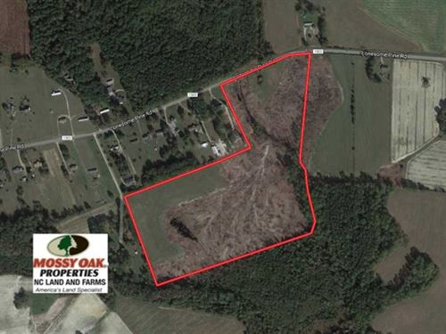 32 Acres of Farm And Timber Land : Whitakers : Nash County : North Carolina