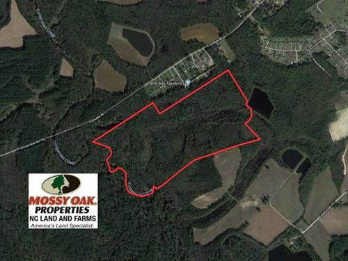 115 Acres of Hunting Land For Sale : Wilson : North Carolina