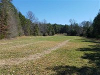 55 Acres in York, York County : York : York County : South Carolina