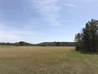 Beautiful 50 +/- Acres, Bartow Co : Taylorsville : Bartow County : Georgia