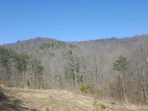 McDermott Pond Creek Rd - 25 Acres : Mc Dermott : Scioto County : Ohio