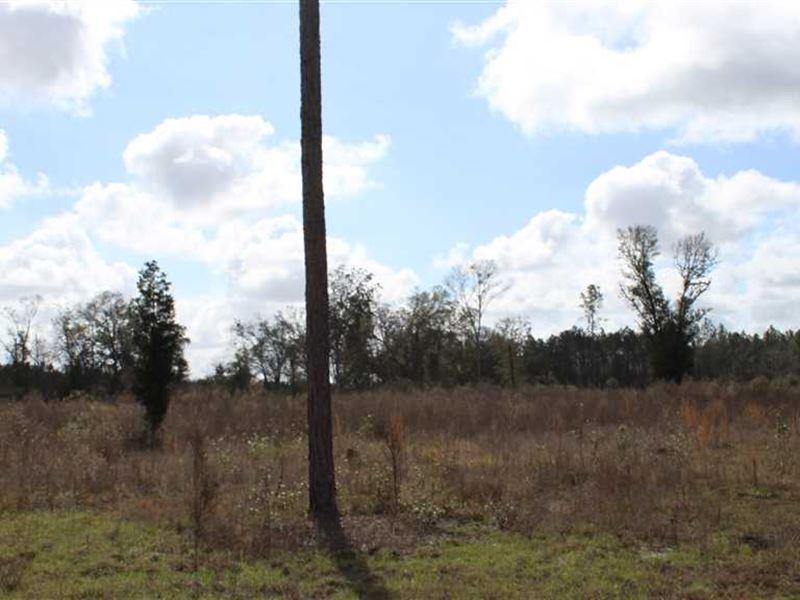 1578 NE Gooseberry St., Webb : Lee : Madison County : Florida