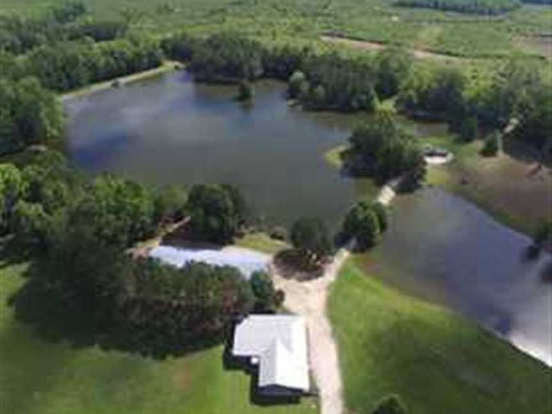 World Class 10,000 Sq, Ft, Lodge : Tuskegee : Macon County : Alabama