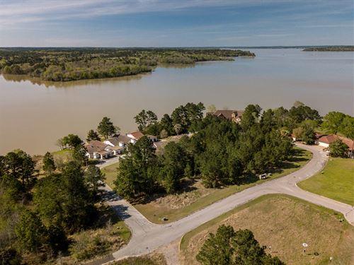 Auction 50+ Developed Lots : Huntsville : San Jacinto County : Texas