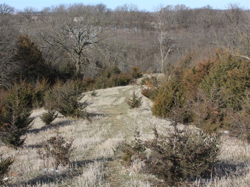Brownville 55 : Brownville : Nemaha County : Nebraska