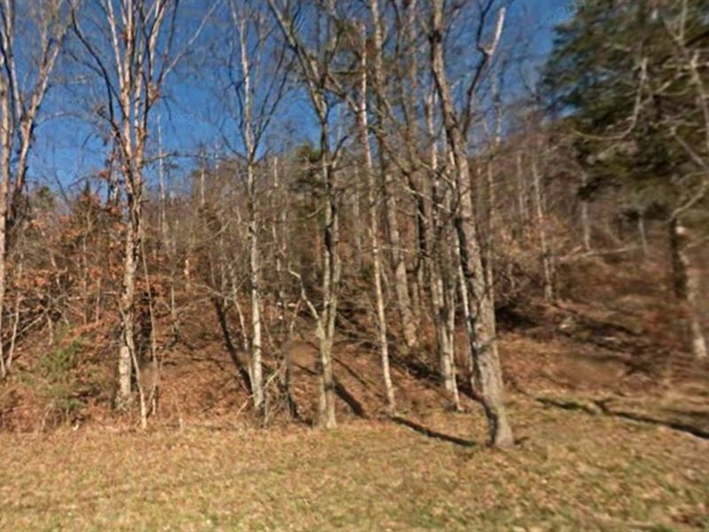 Sevier County, Tn $185,000 : Sevierville : Sevier County : Tennessee