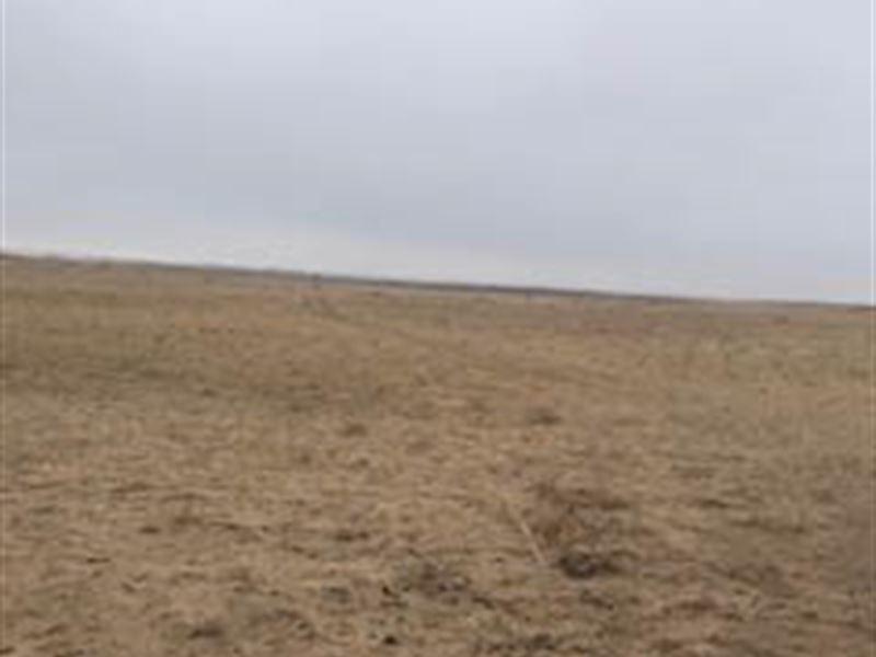 Farm For Sale In Finney County, Ks : Garden City : Finney County : Kansas