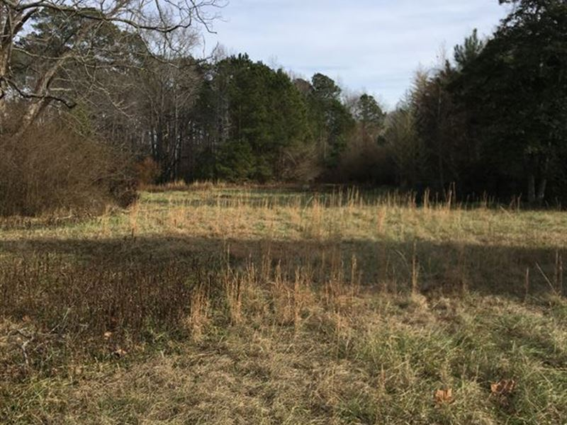 Great Property For The Developer : Gatesville : Gates County : North Carolina