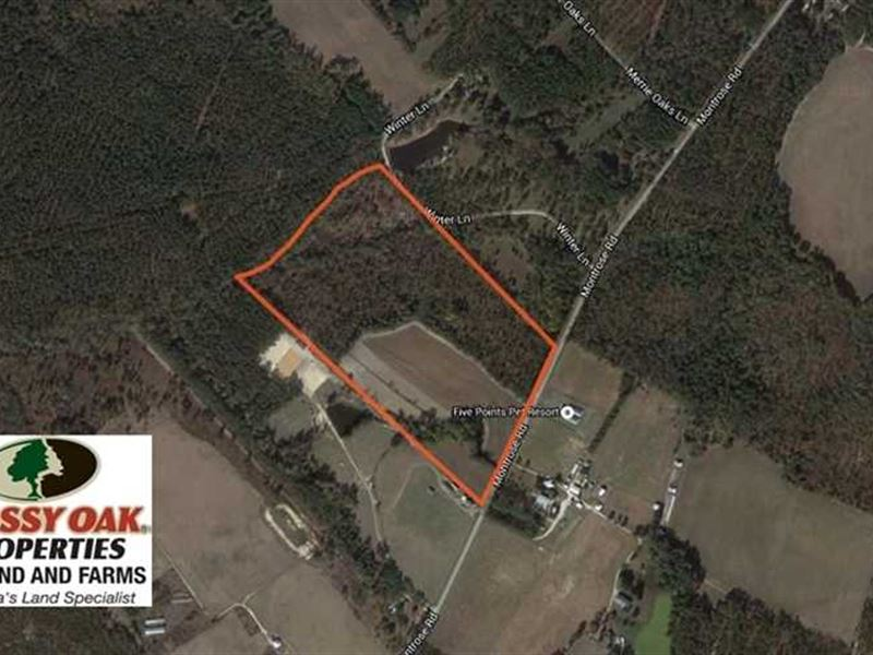 50 Acres of Farm Land For Sale in : Raeford : Hoke County : North Carolina