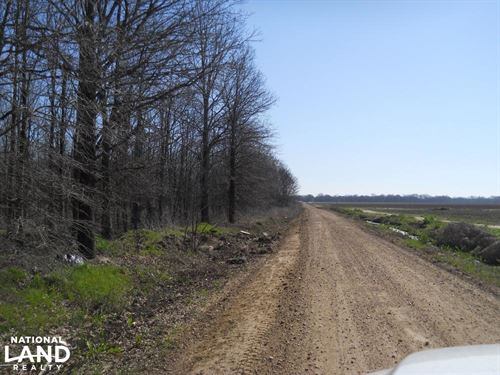 Twiner Road Tract : Ruleville : Sunflower County : Mississippi