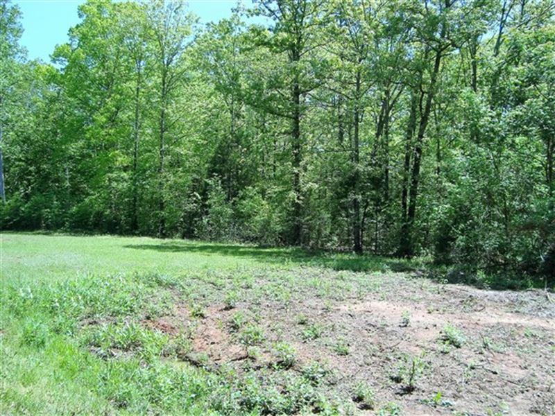 118.01 Acres - York County, Sc : Hickory Grove : York County : South Carolina