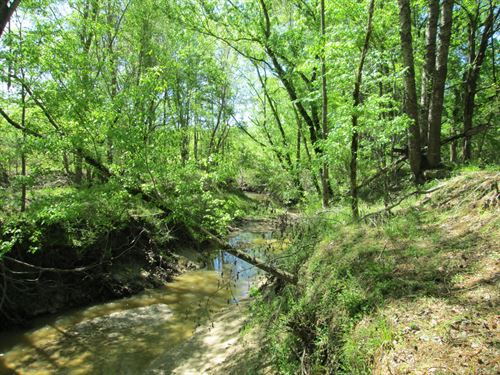 Great Recreational Tract For Sale : Utica : Hinds County : Mississippi