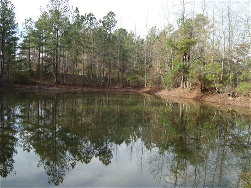 8.4 Acres - Fairfield County, Sc : Blair : Fairfield County : South Carolina