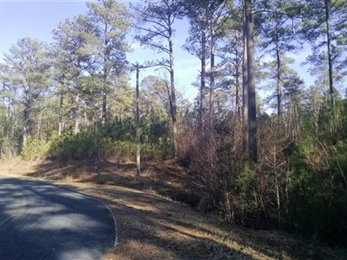 5 Acres - Fairfield County, Sc : Ridgeway : Fairfield County : South Carolina