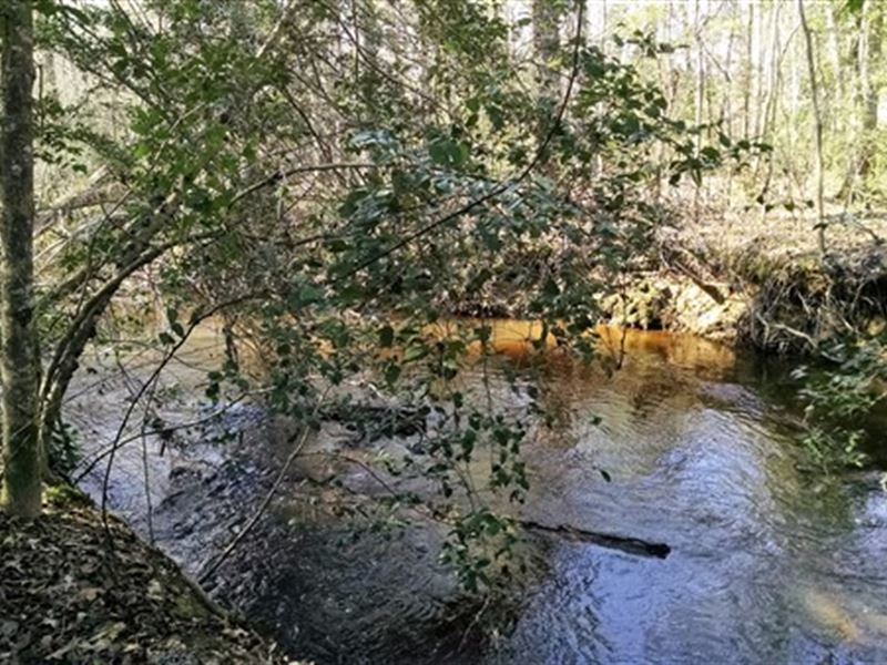13.11 Acres - Kershaw County, Sc : Elgin : Kershaw County : South Carolina