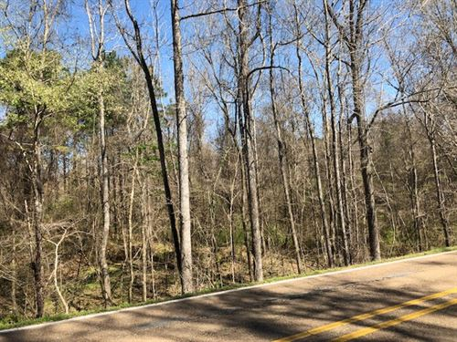 Hunting Tract W/ Marketable Timber : Woodville : Wilkinson County : Mississippi