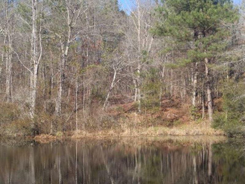 7.2 Acres - Fairfield County, Sc : Ridgeway : Fairfield County : South Carolina