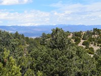 Co Land Adjoins Nat Forest : Florence : Fremont County : Colorado