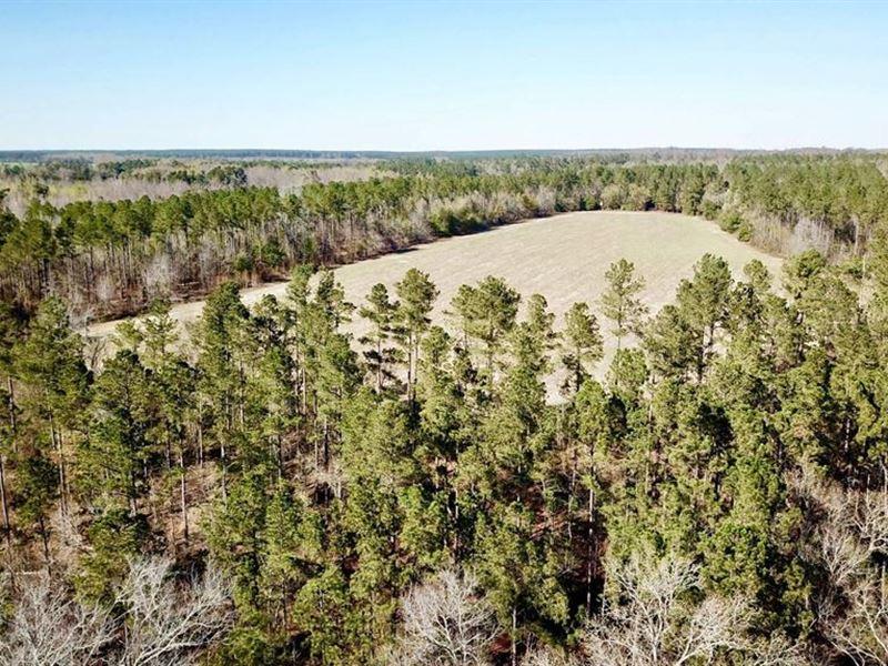 Clingman Tract : Martin : Allendale County : South Carolina