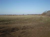 Highly Tillable Row Crop Farm Mo : Ionia : Benton County : Missouri