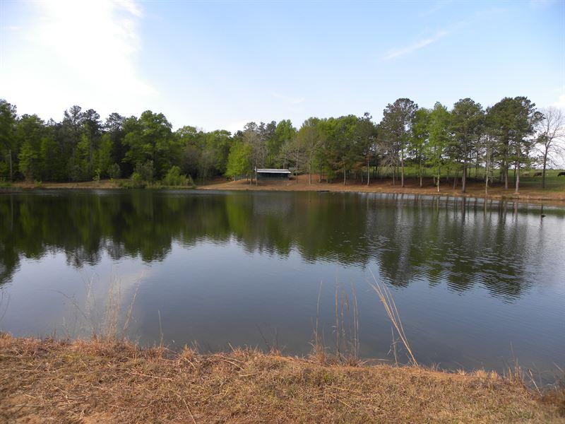 24-044 Cane Creek 80 : Luverne : Crenshaw County : Alabama