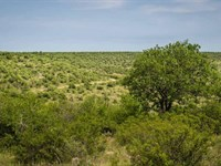 Twin Canyons Ranch : Throckmorton : Throckmorton County : Texas
