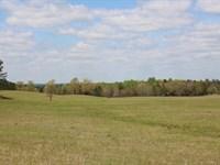 Pasture, Hay, & Hunting : Buena Vista : Marion County : Georgia