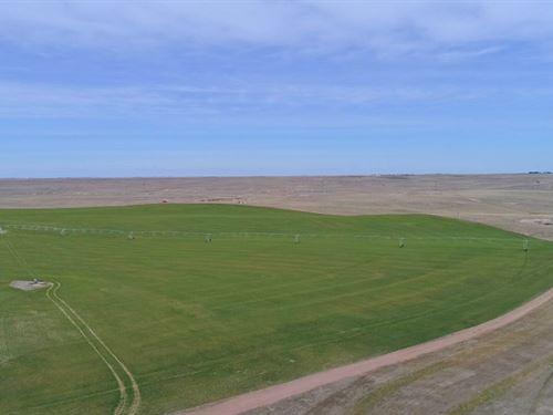 Potter Pivots And Range : Potter : Cheyenne County : Nebraska