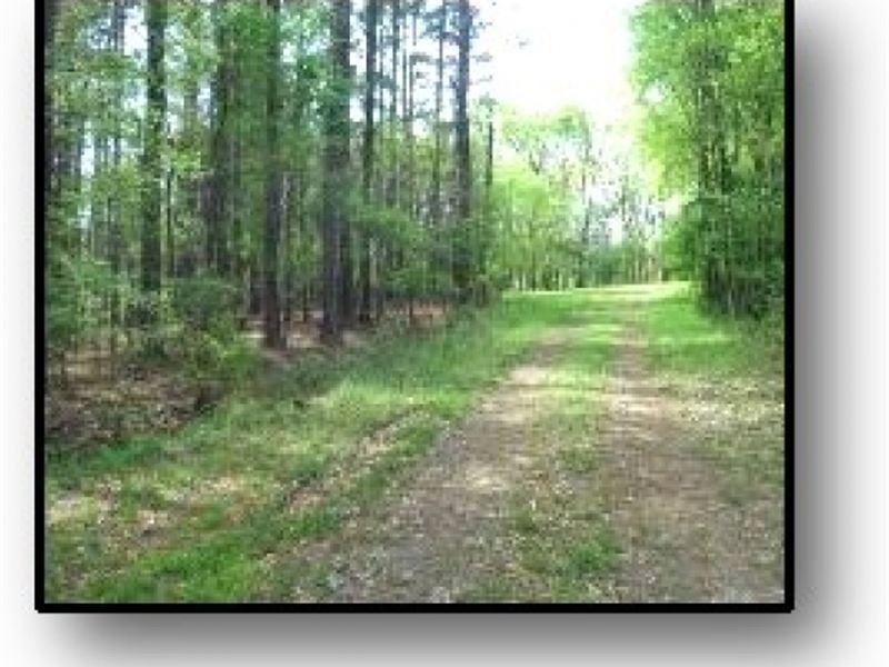 9.73 Acres In Madison County : Madison : Madison County : Mississippi
