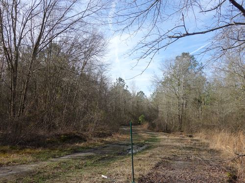 27.73 Acres - Lee County, Sc : Bishopville : Lee County : South Carolina