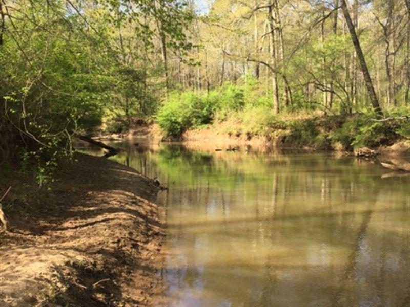 Leavell Tract : Washington : Wilkes County : Georgia