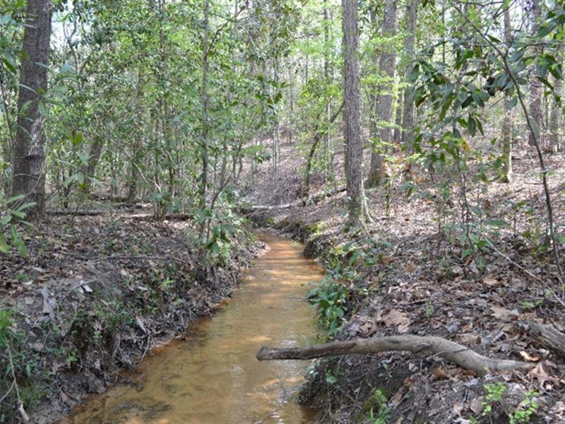 Dixon Ridge : Toomsboro : Wilkinson County : Georgia