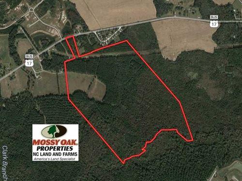 138 Acres of Farm And Timber : Bolivia : Brunswick County : North Carolina