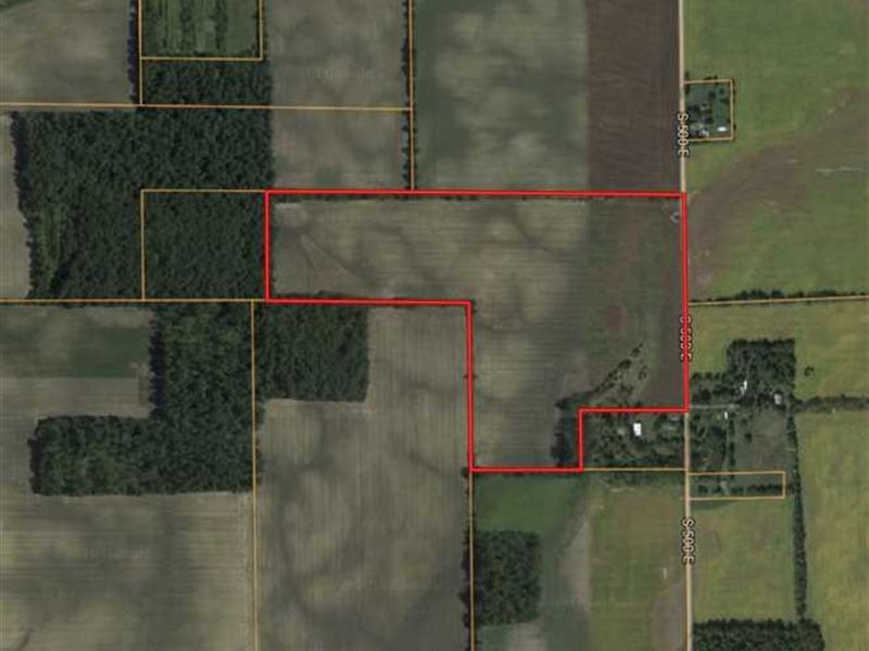 60 Acres of Tillable Land, Hartfo : Hartford City : Blackford County : Indiana
