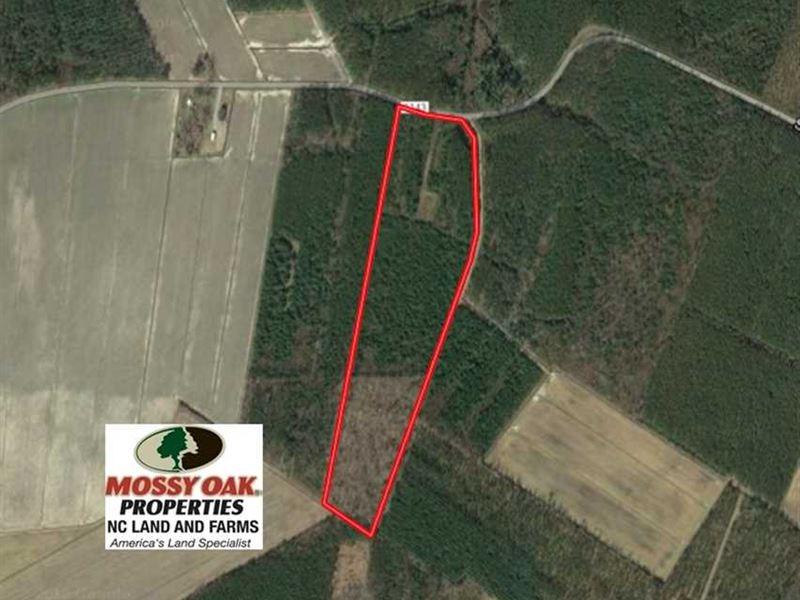 Under Contract, 25.13 Acres of Af : Scranton : Hyde County : North Carolina
