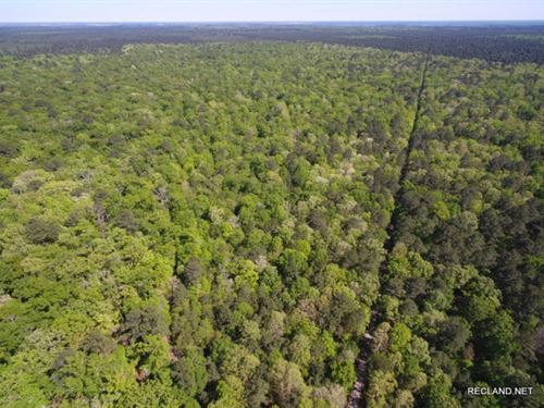 360 Ac - Development Or Large Acrea : Sterlington : Ouachita Parish : Louisiana