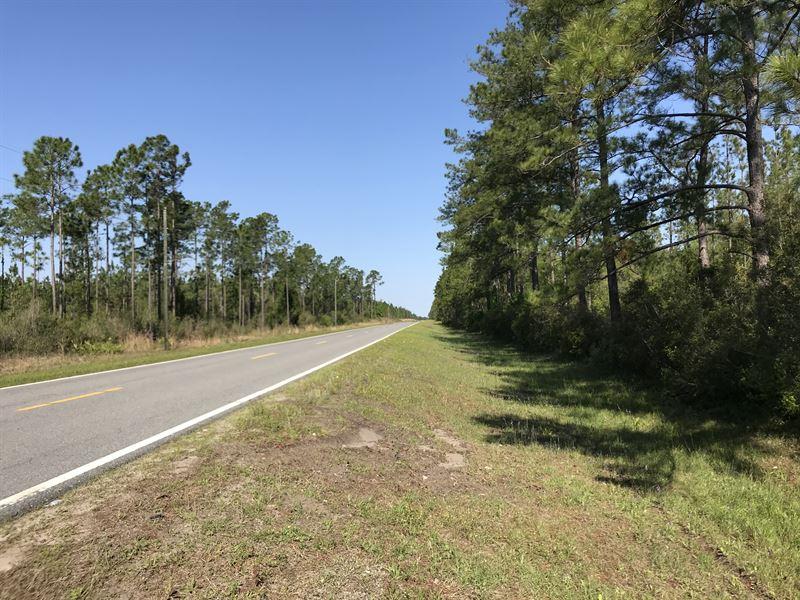 Camden Retreat : Woodbine : Camden County : Georgia