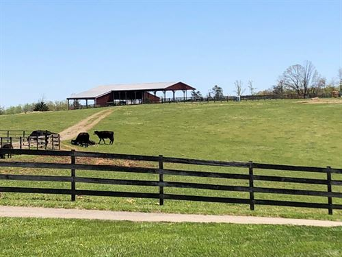 Beautiful 262 Acre Farm : Wirtz : Franklin County : Virginia