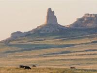 Canyon View Ranch : Lagrange : Goshen County : Wyoming
