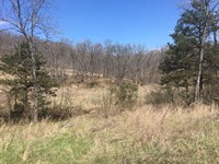 37 Acres With Lake Lot In Camde : Sunrise Beach : Camden County : Missouri