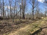 17 Acres With a Beautiful Moun : Marshall : Searcy County : Arkansas