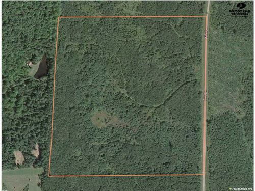 40 Acres of Hunting Land For Sale : Antigo : Langlade County : Wisconsin