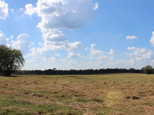 Mini Farm In Bibb County : Macon : Bibb County : Georgia