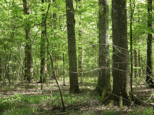 Harperville 555 : Harperville : Scott County : Mississippi